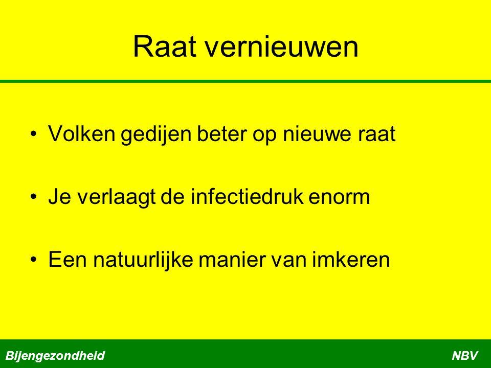 Raat vernieuwen Volken gedijen beter op nieuwe raat Je verlaagt de infectiedruk enorm Een natuurlijke manier van imkeren BijengezondheidNBV