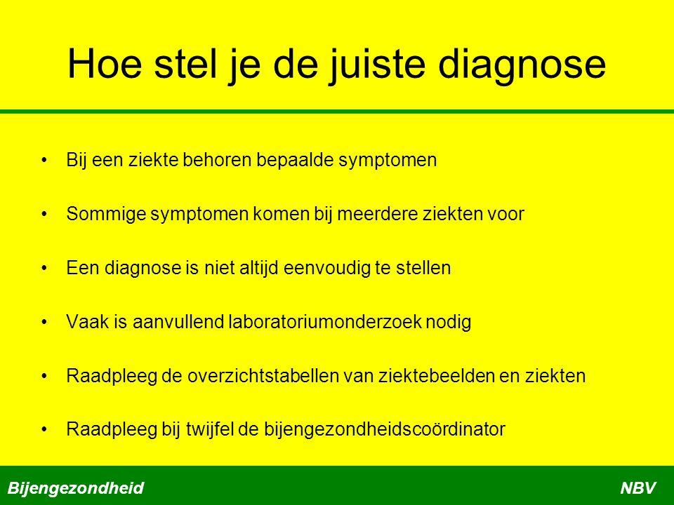 Hoe stel je de juiste diagnose Bij een ziekte behoren bepaalde symptomen Sommige symptomen komen bij meerdere ziekten voor Een diagnose is niet altijd