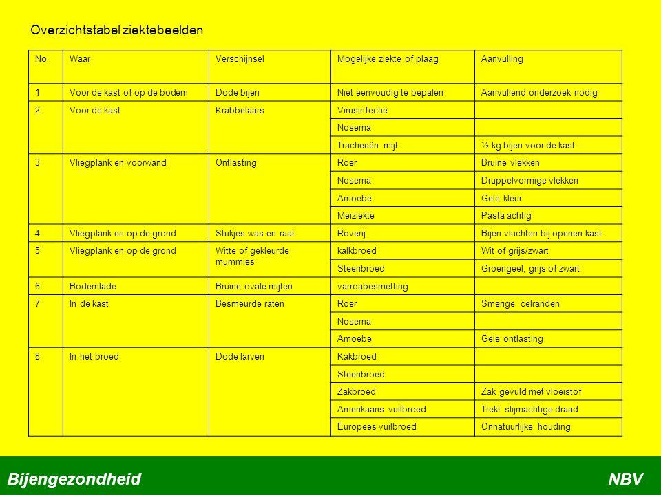 NoWaarVerschijnselMogelijke ziekte of plaagAanvulling 1Voor de kast of op de bodemDode bijenNiet eenvoudig te bepalenAanvullend onderzoek nodig 2Voor