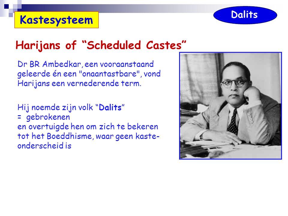 Dr BR Ambedkar, een vooraanstaand geleerde én een