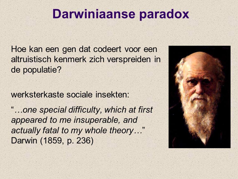 """Darwiniaanse paradox Hoe kan een gen dat codeert voor een altruistisch kenmerk zich verspreiden in de populatie? werksterkaste sociale insekten: """"…one"""