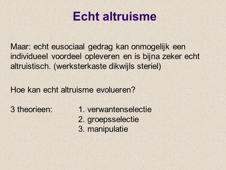 Echt altruisme Maar: echt eusociaal gedrag kan onmogelijk een individueel voordeel opleveren en is bijna zeker echt altruistisch. (werksterkaste dikwi