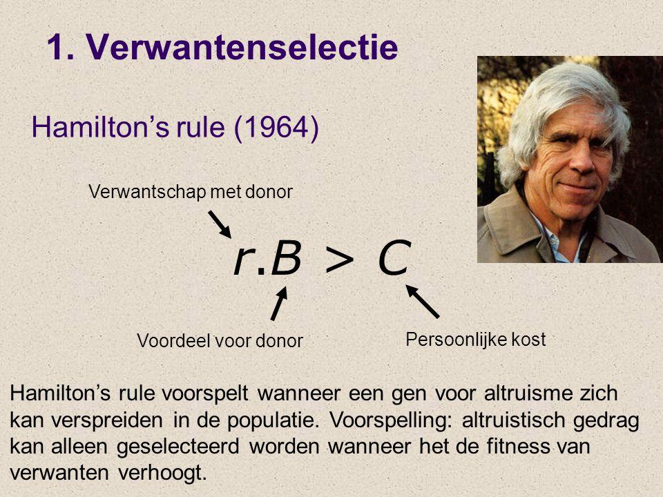 r.B > C Verwantschap met donor Voordeel voor donor Persoonlijke kost Hamilton's rule voorspelt wanneer een gen voor altruisme zich kan verspreiden in