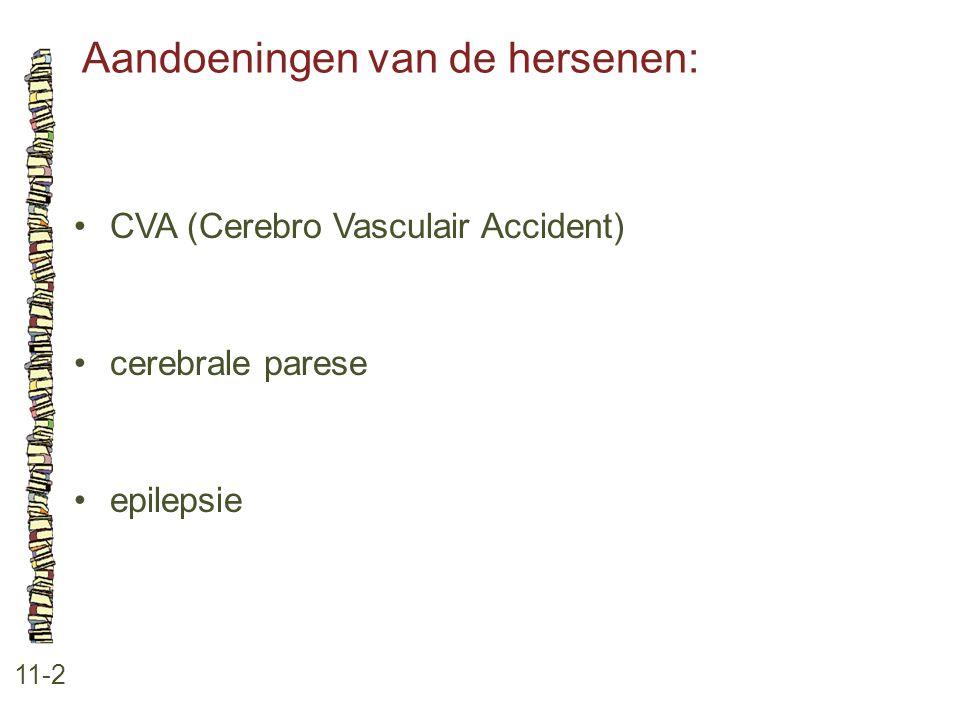 Aandoeningen van de hersenen: 11-2 CVA (Cerebro Vasculair Accident) cerebrale parese epilepsie