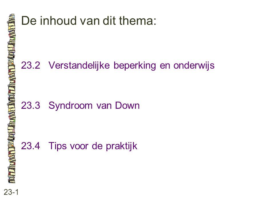 De inhoud van dit thema: 23-1 23.2 Verstandelijke beperking en onderwijs 23.3 Syndroom van Down 23.4 Tips voor de praktijk