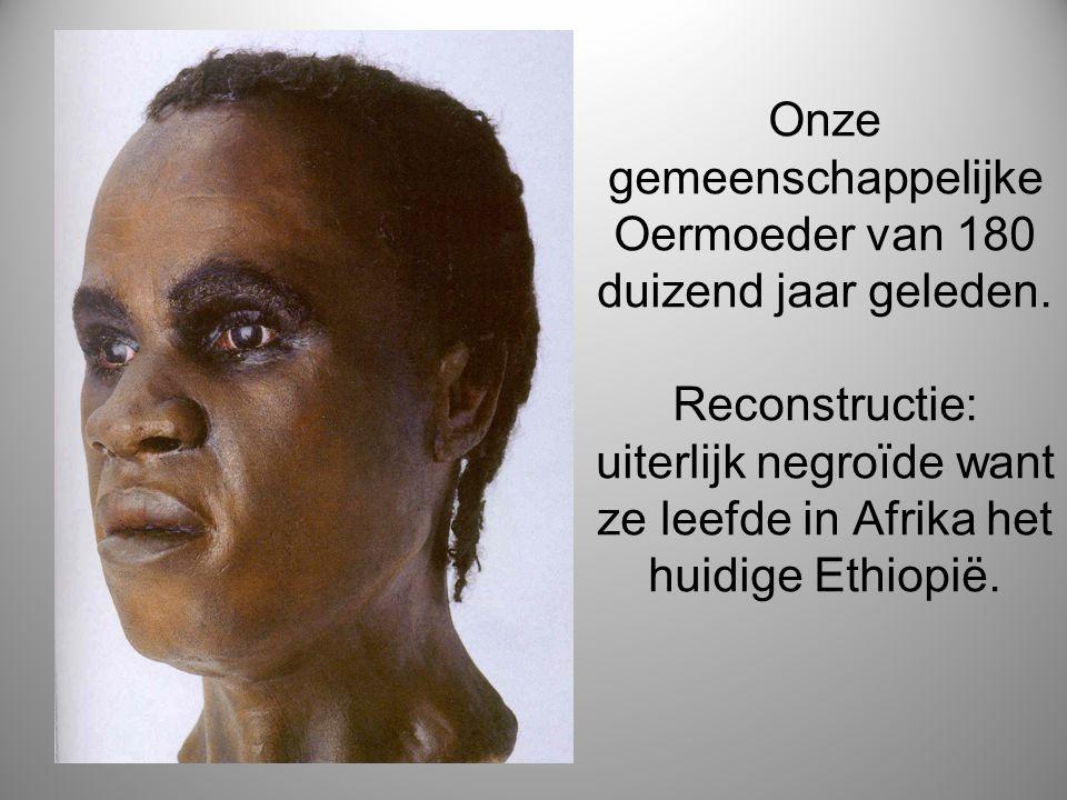 Onze gemeenschappelijke Oermoeder van 180 duizend jaar geleden. Reconstructie: uiterlijk negroïde want ze leefde in Afrika het huidige Ethiopië.