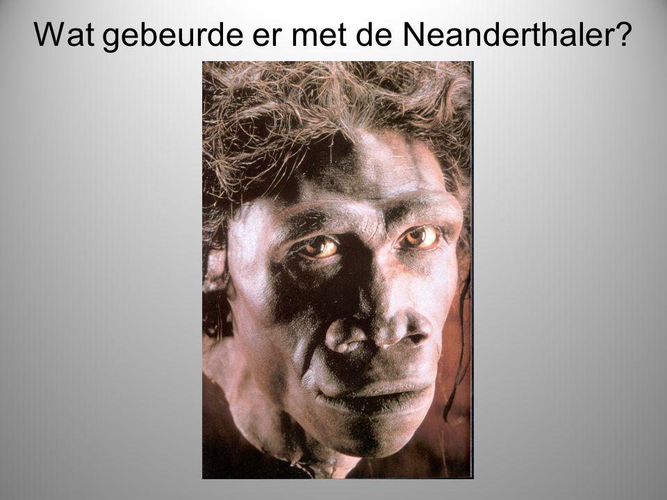 Wat gebeurde er met de Neanderthaler?