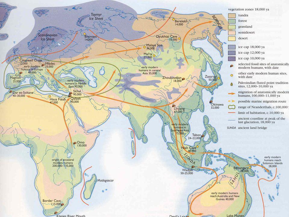 Onze gemeenschappelijke Oermoeder van 180 duizend jaar geleden.