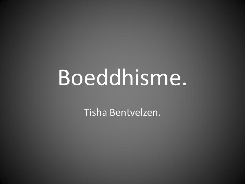 Boeddhisme. Tisha Bentvelzen.