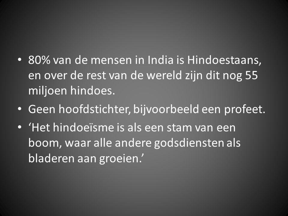 80% van de mensen in India is Hindoestaans, en over de rest van de wereld zijn dit nog 55 miljoen hindoes. Geen hoofdstichter, bijvoorbeeld een profee