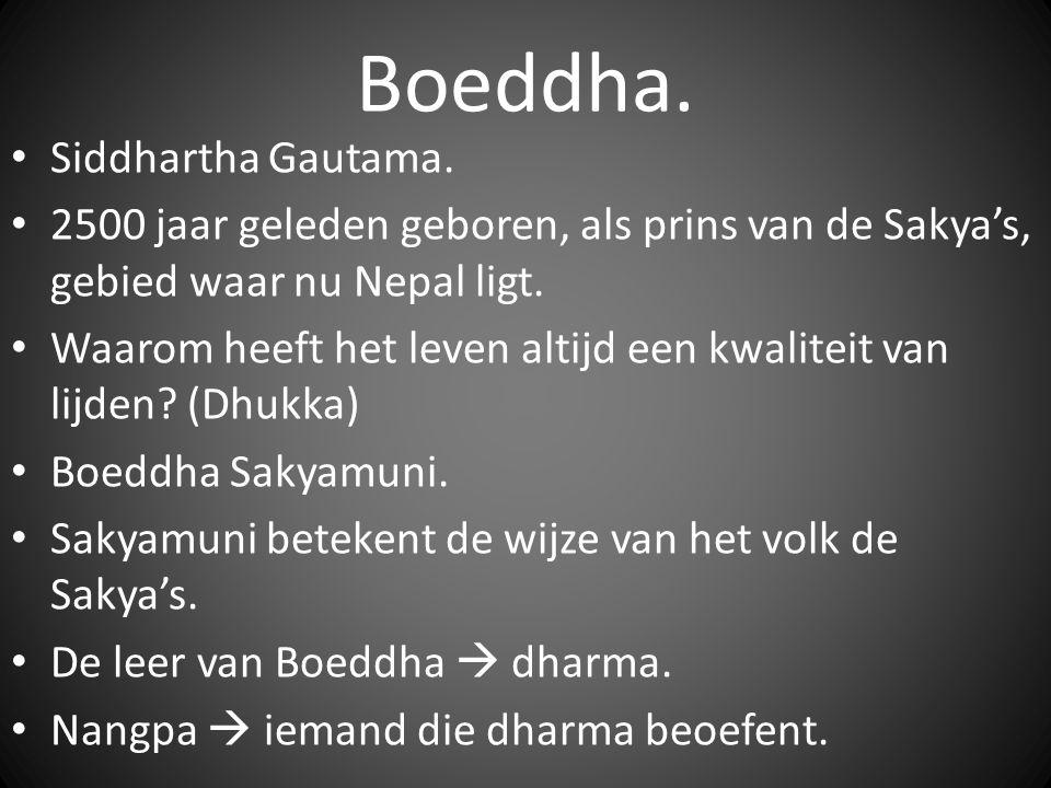 Boeddha. Siddhartha Gautama. 2500 jaar geleden geboren, als prins van de Sakya's, gebied waar nu Nepal ligt. Waarom heeft het leven altijd een kwalite