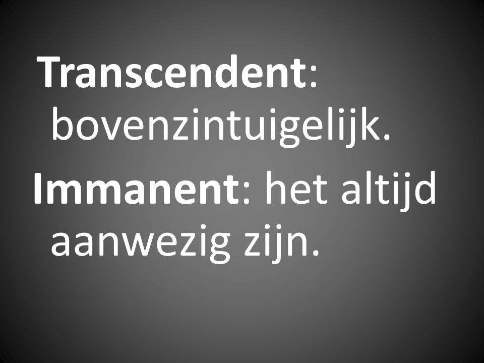 Transcendent: bovenzintuigelijk. Immanent: het altijd aanwezig zijn.
