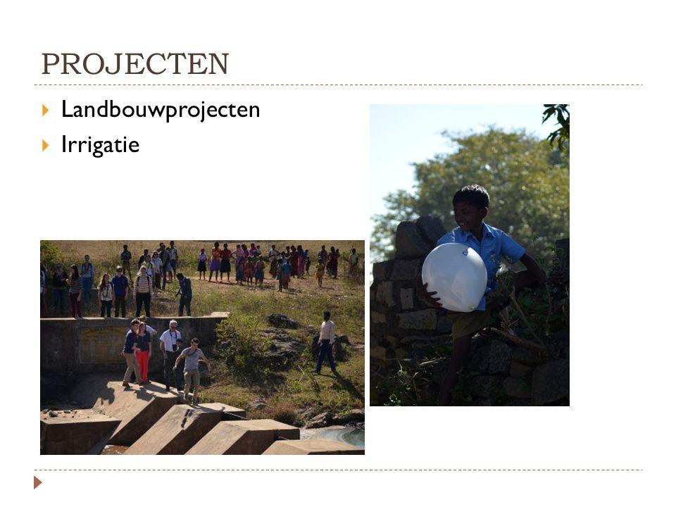 PROJECTEN  Landbouwprojecten  Irrigatie
