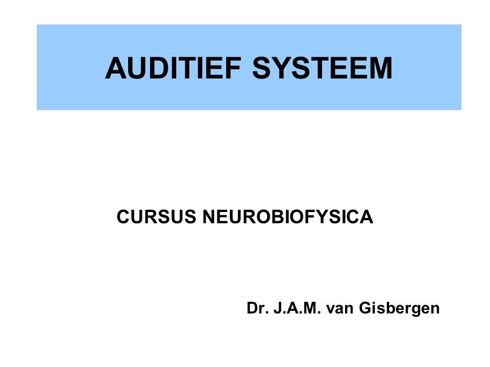 AUDITIEF SYSTEEM CURSUS NEUROBIOFYSICA Dr. J.A.M. van Gisbergen