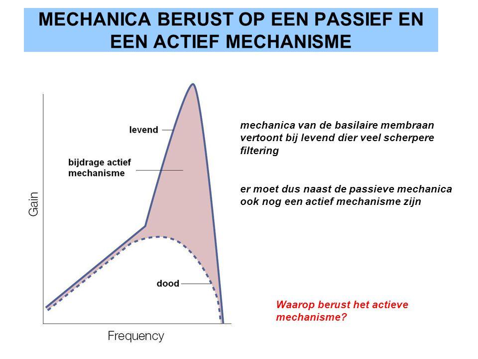 MECHANICA BERUST OP EEN PASSIEF EN EEN ACTIEF MECHANISME mechanica van de basilaire membraan vertoont bij levend dier veel scherpere filtering er moet