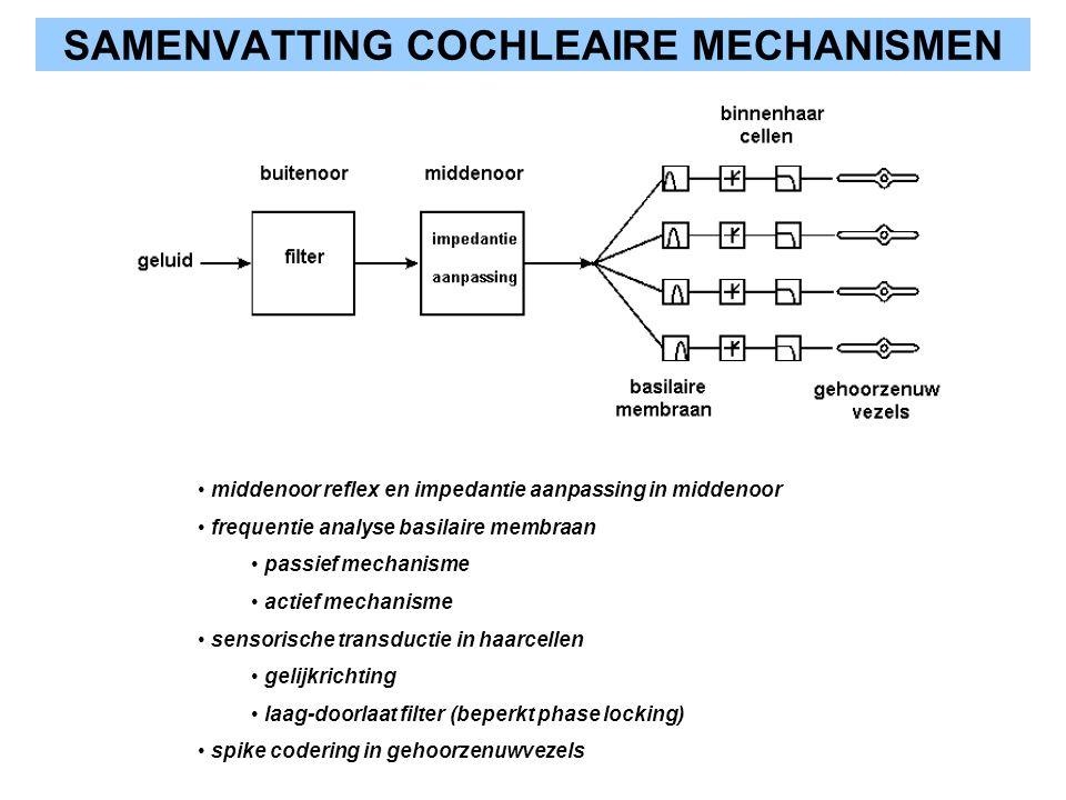 SAMENVATTING COCHLEAIRE MECHANISMEN middenoor reflex en impedantie aanpassing in middenoor frequentie analyse basilaire membraan passief mechanisme ac