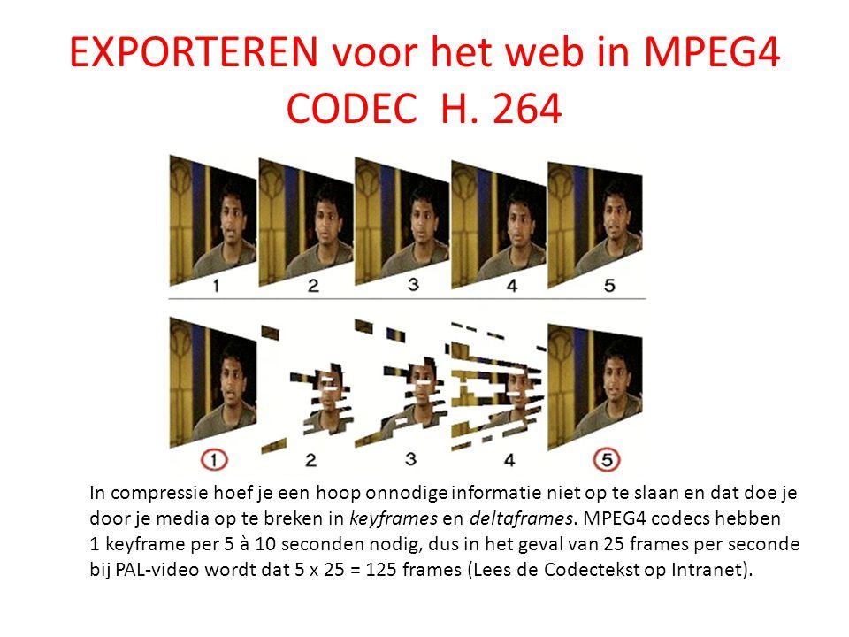 EXPORTEREN voor het web in MPEG4 CODEC H.