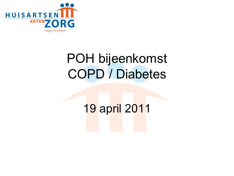 Registratie (1) Herziening protocollen DM en COPD Minimale dataset geminimaliseerd Hoofdbehandelaar en aard consult Adviesgroep HIS protocollen