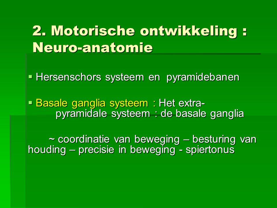 2. Motorische ontwikkeling : Neuro-anatomie  Hersenschors systeem en pyramidebanen  Basale ganglia systeem : Het extra- pyramidale systeem : de basa