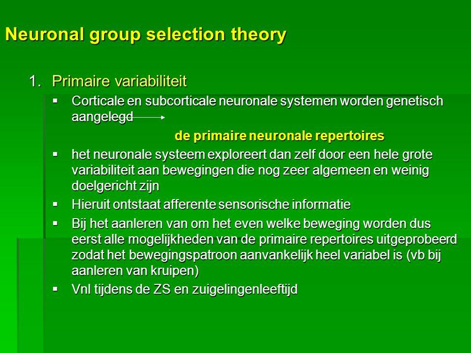 Neuronal group selection theory 1.Primaire variabiliteit  Corticale en subcorticale neuronale systemen worden genetisch aangelegd de primaire neurona