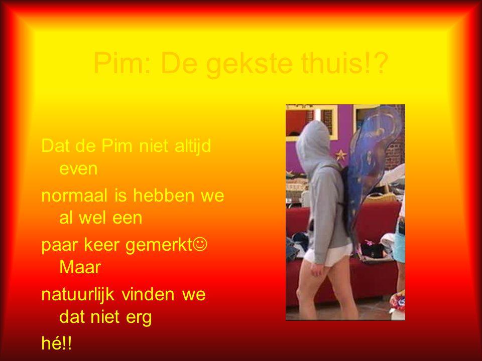 Pimiaans  : Wat is dat?? Vraag jij je ook af wat Pimiaans is?? Wel Pimiaans is een taal die we zelf verzonnen hebben. Bv: De Pim uit de Academie kijk