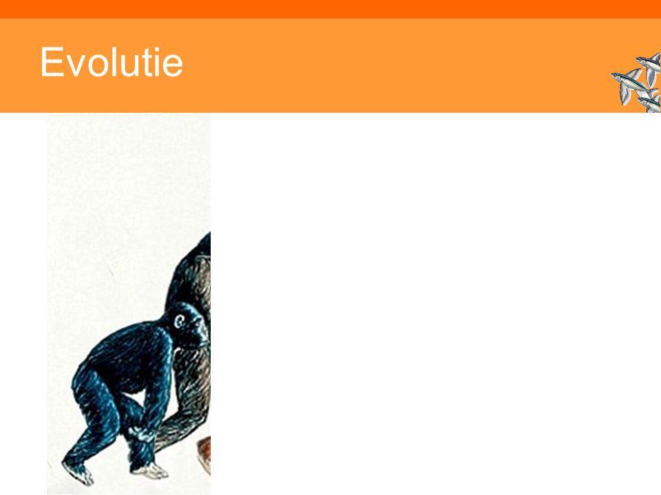 Inleiding Adaptieve Systemen, Opleiding CKI, Utrecht. Auteur: Gerard Vreeswijk Evolutie
