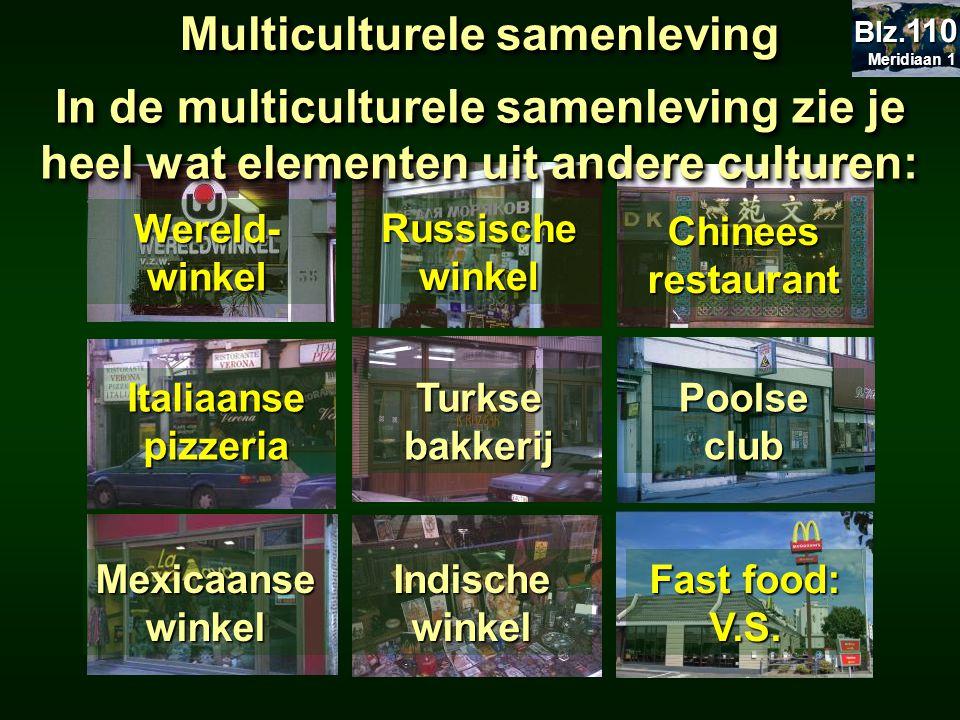 Russische winkel Chinees restaurant Italiaanse pizzeria Turkse bakkerij Poolse club Mexicaanse winkel Indische winkel Multiculturele samenleving Werel