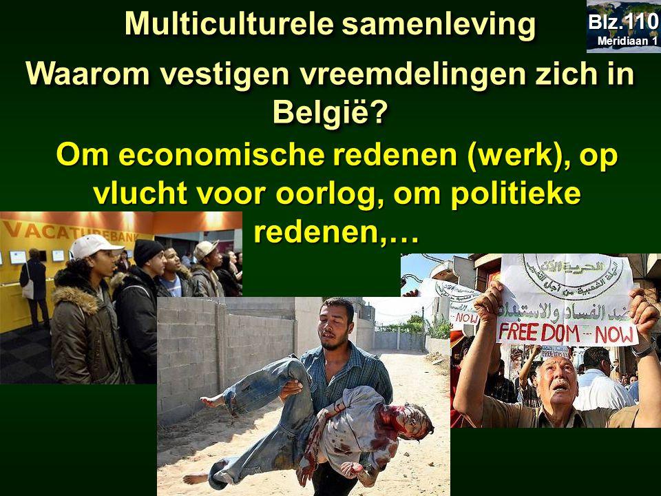 Om economische redenen (werk), op vlucht voor oorlog, om politieke redenen,… Waarom vestigen vreemdelingen zich in België? Multiculturele samenleving