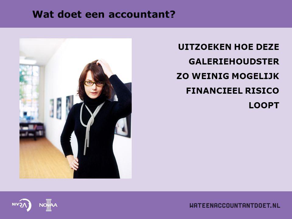 Wat doet een accountant? UITZOEKEN HOE DEZE GALERIEHOUDSTER ZO WEINIG MOGELIJK FINANCIEEL RISICO LOOPT