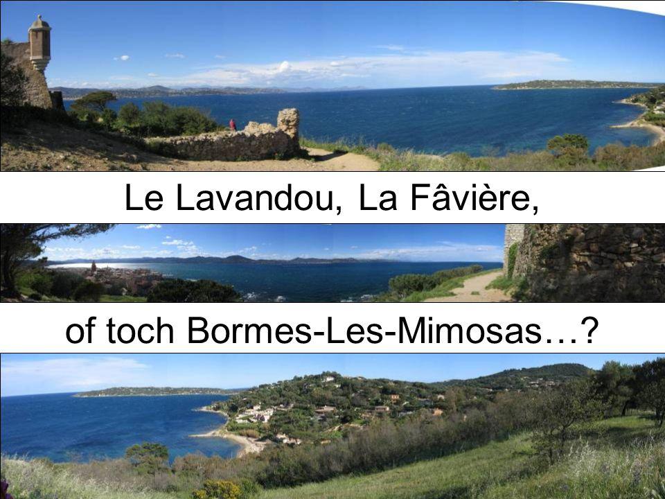 Le Lavandou, La Fâvière, of toch Bormes-Les-Mimosas…?