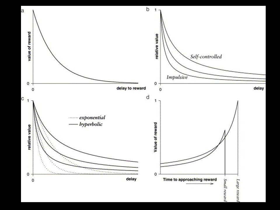 OngevoeligGevoelig Studie 2 – Algemeen beloningssysteem Erotische stimuli activeren het menselijk beloningssysteem (Stark et al.
