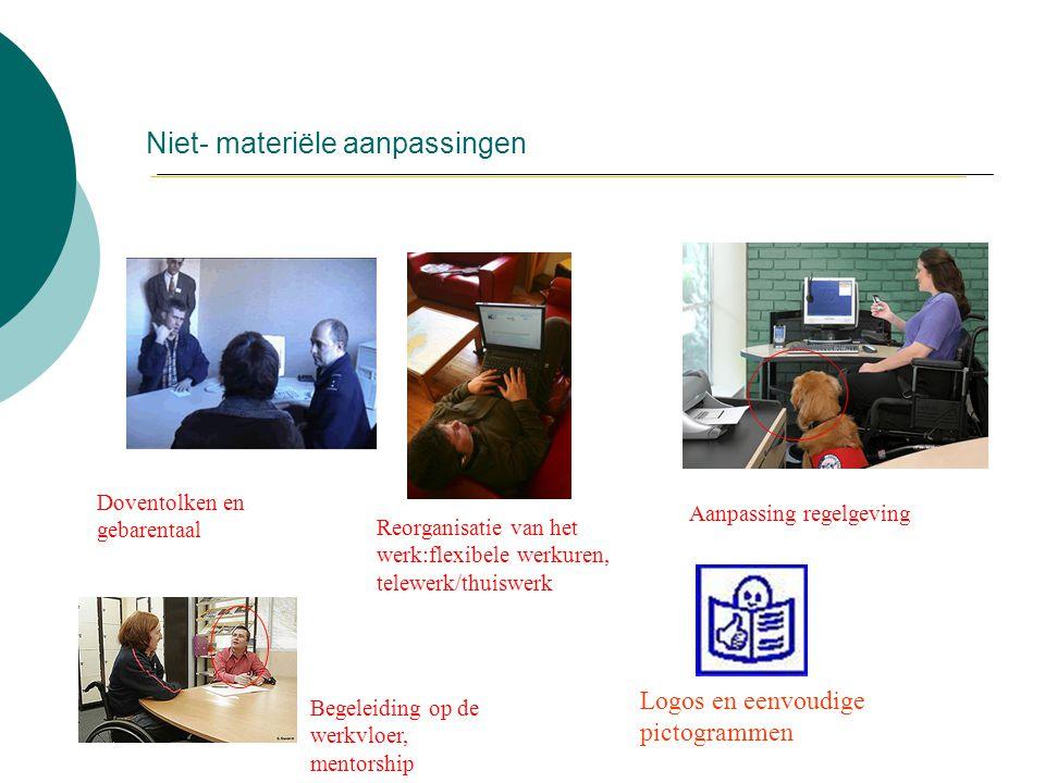 Niet- materiële aanpassingen Reorganisatie van het werk:flexibele werkuren, telewerk/thuiswerk Aanpassing regelgeving Doventolken en gebarentaal Logos