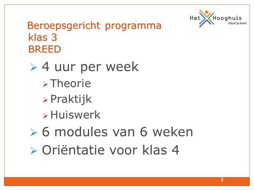 3 Beroepsgericht programma klas 3 BREED Beroepsgericht programma klas 3 BREED  4 uur per week  Theorie  Praktijk  Huiswerk  6 modules van 6 weken