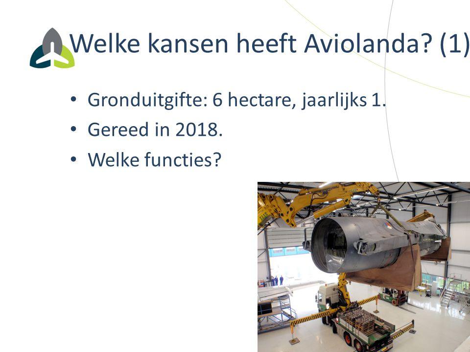 Welke kansen heeft Aviolanda? (1) Gronduitgifte: 6 hectare, jaarlijks 1. Gereed in 2018. Welke functies?