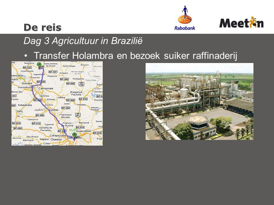 De reis De reis Dag 3 Agricultuur in Brazilië Transfer Holambra en bezoek suiker raffinaderij