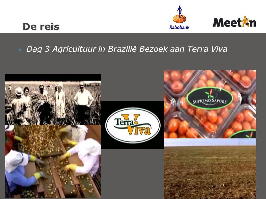  Dag 3 Agricultuur in Brazilië Bezoek aan Terra Viva De reis