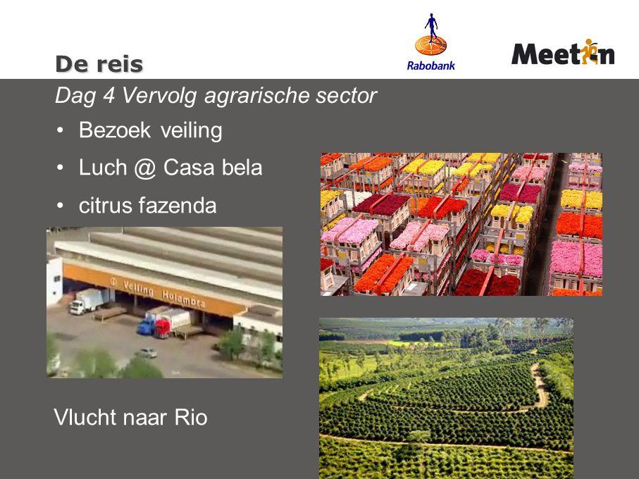 De reis De reis Dag 4 Vervolg agrarische sector Bezoek veiling Luch @ Casa bela citrus fazenda Vlucht naar Rio