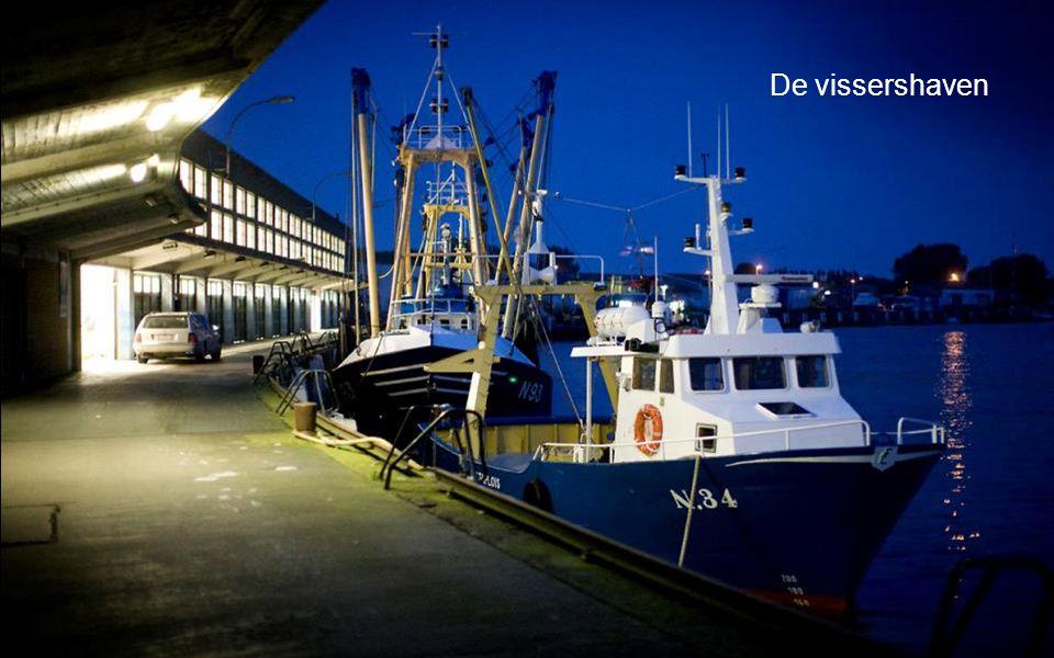 Le Vent souffle Ou Il veut in Yachthaven Nieuwpoort