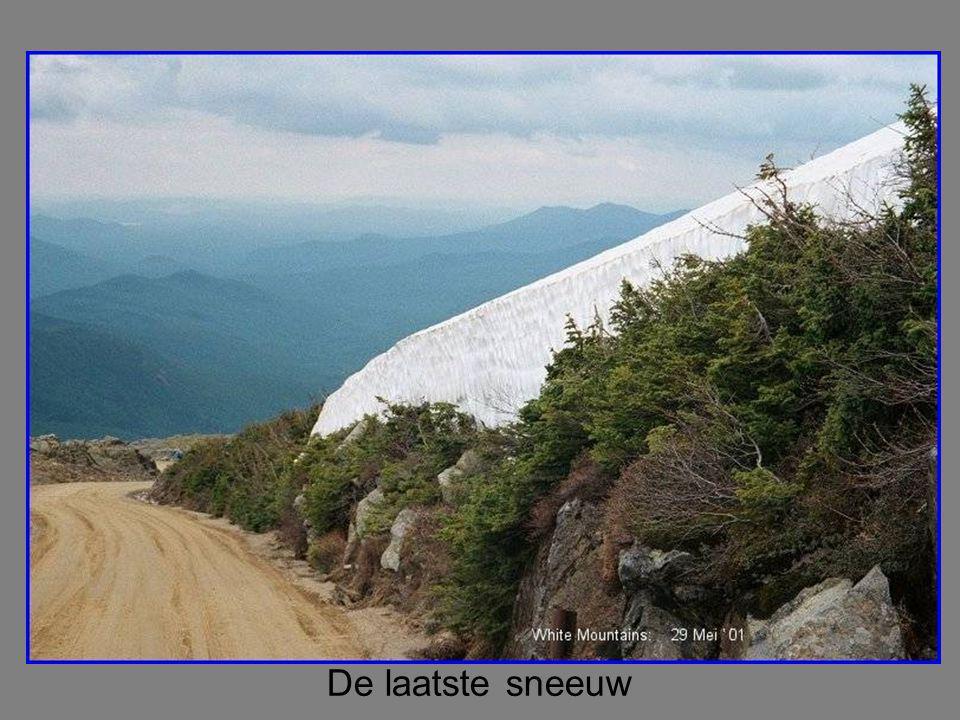 De laatste sneeuw