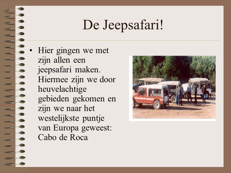 De Jeepsafari.Hier gingen we met zijn allen een jeepsafari maken.
