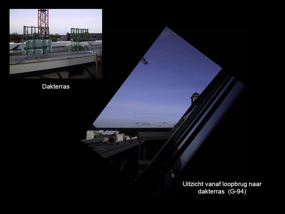 Uitzicht vanaf loopbrug naar dakterras (G-94) Dakterras