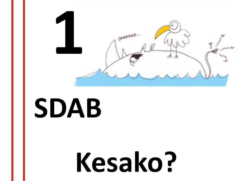 1 SDAB Kesako