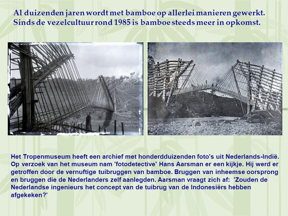 Al duizenden jaren wordt met bamboe op allerlei manieren gewerkt. Sinds de vezelcultuur rond 1985 is bamboe steeds meer in opkomst. Het Tropenmuseum h