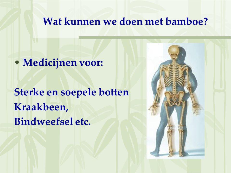 Wat kunnen we doen met bamboe? Medicijnen voor: Sterke en soepele botten Kraakbeen, Bindweefsel etc.