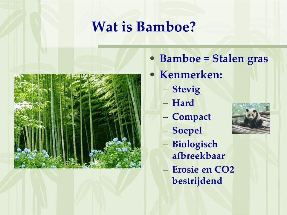 Waar groeit bamboe? –China –India –Indonesië –Etc.