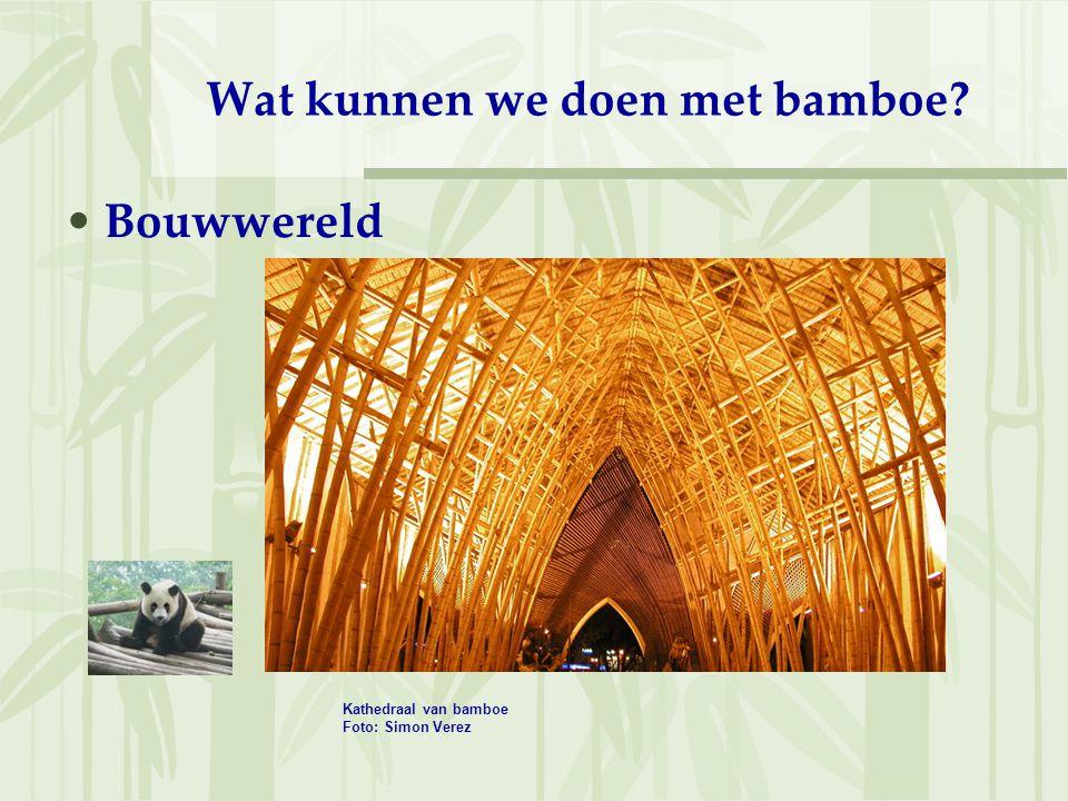 Wat kunnen we doen met bamboe? Bouwwereld Kathedraal van bamboe Foto: Simon Verez