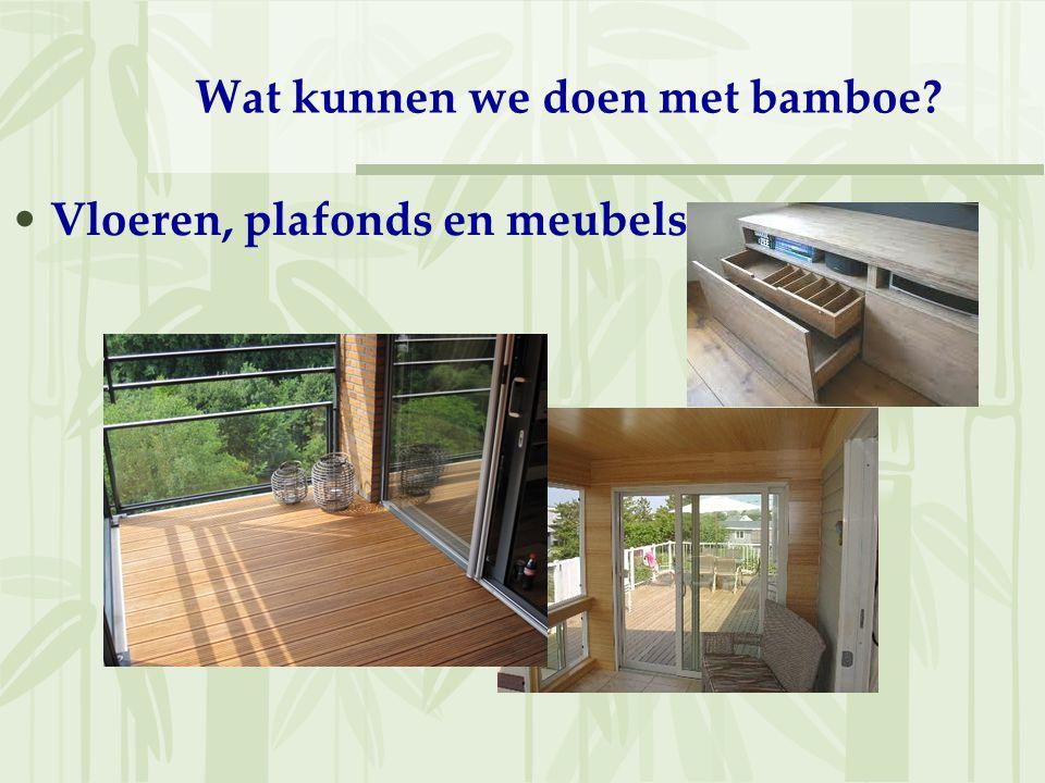 Wat kunnen we doen met bamboe? Vloeren, plafonds en meubels
