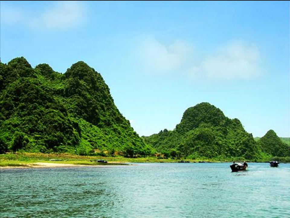 De grot is langer dan 6 km. Ingestorte doline - mini jungle 400 m onder de oppervlakte.
