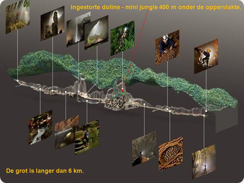 Niemand had de grot voordien ooit betreden, ook de lokale junglebewoners niet, omdat uit de ingang (klein volgens Vietnamese maatstaven: 10m hoog en 3