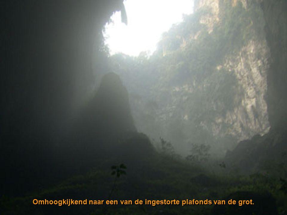 Ingestorte doline Een mini jungle 400 m onder de oppervlakte. Dolines worden gevormd wanneer het plafond van een grottensysteem instort en het daglich